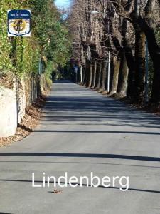 m01 Lindeberg