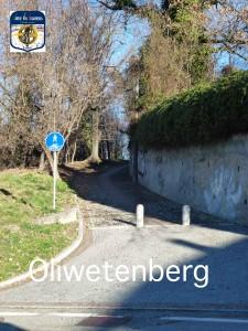 m05 Oliwetenberg